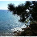 Baie de Fouesnant 4