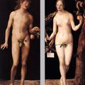 Albrecht dürer's adam and eve returns to public display @ the prado museum