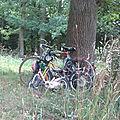 Haikus de mon Tour de France 2012 (14)