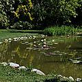 Parc Floral Les Martels 2 23-08-16