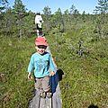 Parc national de sooma (estonie, joeesu, 3-4