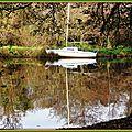Reflets arbres et voilier au Lac 2