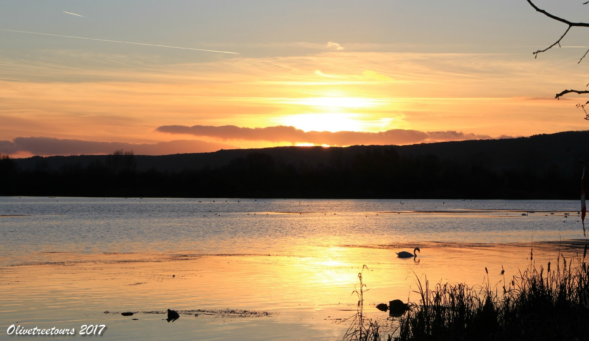 Le lac de Madine en fin de journée / The Lake of Madine at the end of the day
