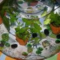 plantes aquatiques , tissu ikéa et petits poissons......