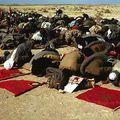 صور صحراء المغربية