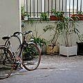 vélo, cour parisienne_9522