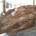 fibres de coco pour fabriquer des balais