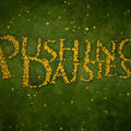 [DL] <b>Pushing</b> <b>Daisies</b>
