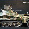 Sdkfz 250-9 PICT2974