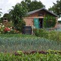 jardins familiaux 0170012