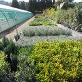 Production et Passion du Jardin