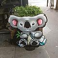 Un koala loin de son bush