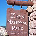 Zion national park : un oasis en plein désert!