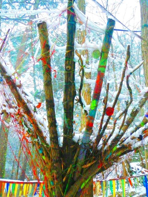 un nid tressé sous la neige yurtao