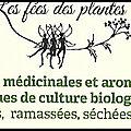 Les fées des plantes : Privilégions le <b>médicinal</b> local