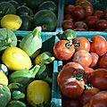 Courgettes et tomates du jardin