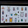 Beetles & Bugs - Drôles de bestioles