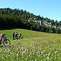 Sentiers et Single <b>VTT</b> du Vercors