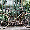 vélo rouillé_7571