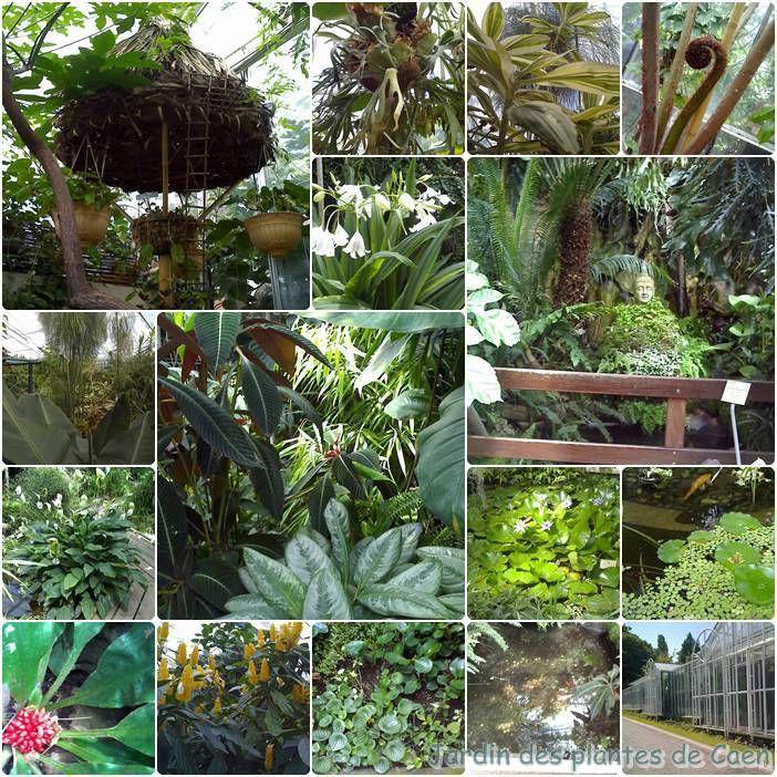 Le jardin des plantes de caen chez plouf - Le jardin des plantes caen ...