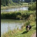 les étangs Marron
