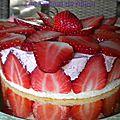 Un fraisie