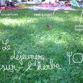 Blog (garden) party #2