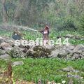santiaguito_remontée sur quetzaltenango_190