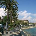 Agéable promenade sur le boulevard Rossini bordé de palmiers