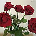 IMG_5041-80-red
