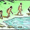 Les chemins de l'évolution