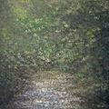 Brouillard vert - carte postale