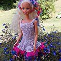 Barbie en rose et bleu
