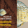 Aquarium de la Porte Dorée - Paris