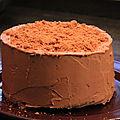 Layer cake chocolat/spéculoos