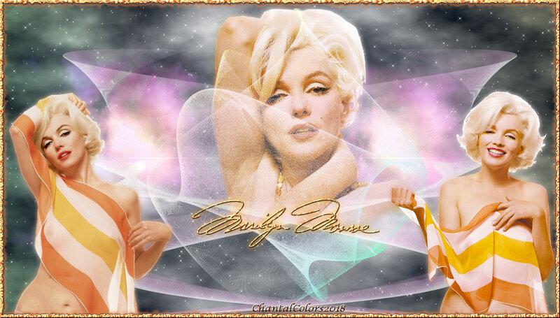 Fonds Marilyn Monroe 2018 (10)