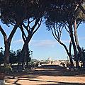 Ripa / Aventino - Jours tranquilles sur l'Aventin (7/13) .Le <b>jardin</b> des orangers (Parco Savello - Giardino degli Aranci).