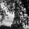 La Tour Eiffel joue à cache-cache