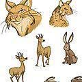Les animaux de la forêt...