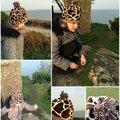 Le bonnet girafe
