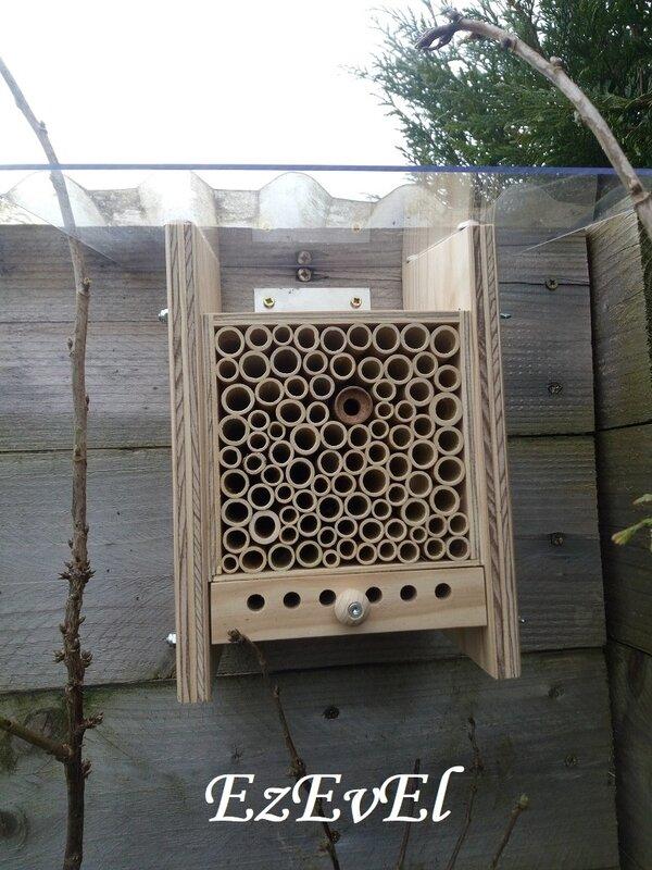 bee home 1 EzEvEl abeilles
