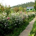 Giverny - jardin