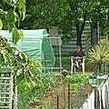 Jardinier Rémi Vidéos 1.2.3