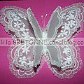 Papillon 3D Pergamano