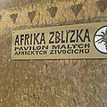 Zoo de Prague- Le Gondi et les autres rongeurs africains