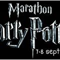 La nuit de <b>Harry</b> <b>Potter</b> au Grand Rex en septembre