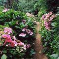 jardin intimiste a