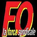 SYNDICAT FO DES COMMUNAUX DE SAINT-DENIS