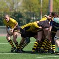 73IMG_0368T