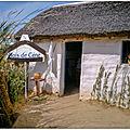 Hutte – bourrine, la maison du marais poitevin vendéen